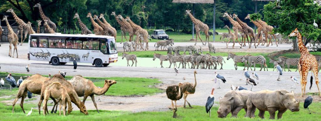 Safari World Marine Park