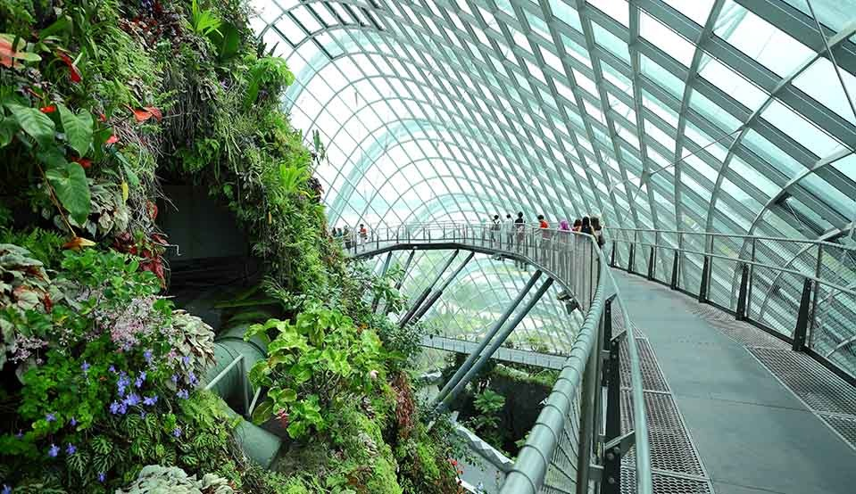 Garden by the Bay 2 Domes Direct Admission